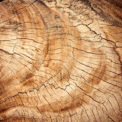 Lasergraveren hout
